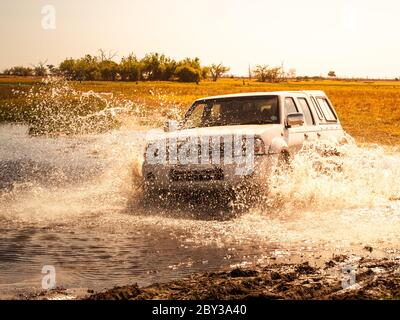 Off-road car fording water on safari wild drive in Chobe National Park, Botswana, Africa. - Stock Photo