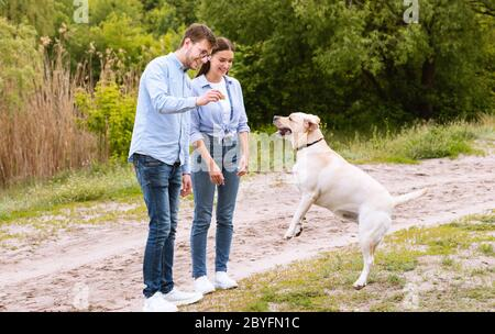Young couple giving a treat to their obedient dog