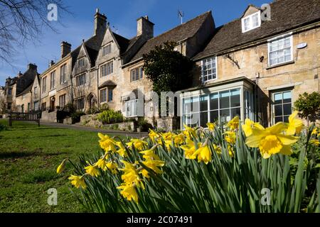 Cotswold cottages along The Hill with spring Daffodils, Burford, Cotswolds, Oxfordshire, England, United Kingdom