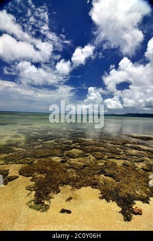 Yonehara Beach, Low Tide,  Ishigaki, Yahema Islands, Ryukyu Islands, Okinawa, Japan