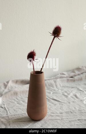Two dry wildflowers with long stems in clay or ceramic handmade vase or jug standing on table covered by white linen cloth against wall - Stock Photo