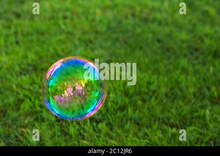 Soapbubble on green natural background. - Stock Photo