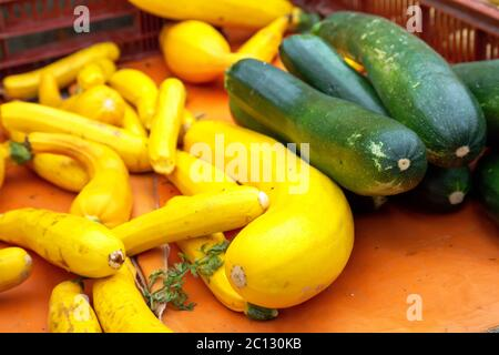 Fresh green and yellow zucchini - Stock Photo