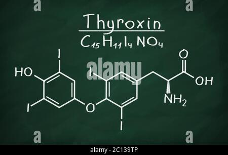 Structural model of Thyroxin - Stock Photo