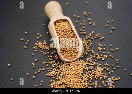 Mustard seeds granum sinapis and a wooden spoon - Stock Photo