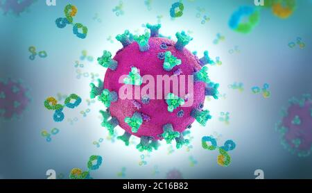 Immunoglobulin or antibody proteins attack a corona virus pathogen cell - 3d illustration
