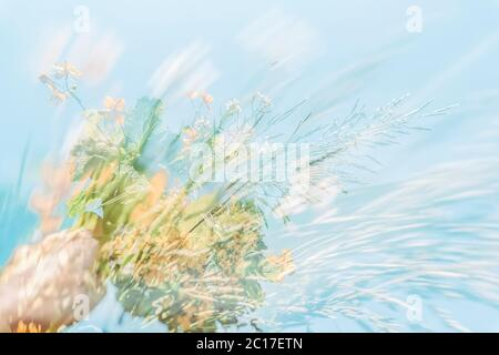Blurred background, double exposure, colorful wild meadow flowers in hand on the background of blue sky. Concept of summer - Stock Photo