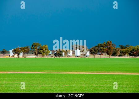 Agricultural Farming Fields - Western Australia - Stock Photo