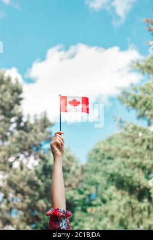 Closeup of woman human hand arm waving Canadian flag against blue sky. Proud citizen man celebrating national Canada Day on 1st of July outdoor. - Stock Photo