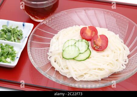 Japanese hiyamugi noodles in a glass plate with Mentuyu