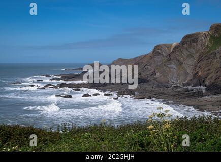 The cliffs at Hartland Quay, north Devon. Rugged coastline. - Stock Photo