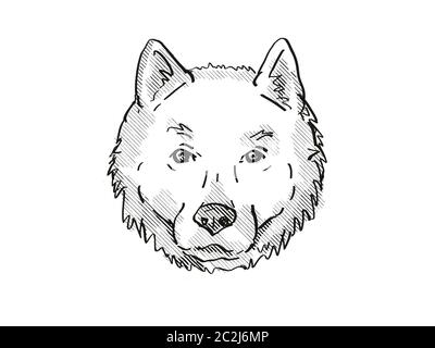 Retro cartoon style drawing of head of a Hokkaido, Ainu-ken, Seta, or Ainu dog, a domestic canine breed on isolated white background done in black and - Stock Photo