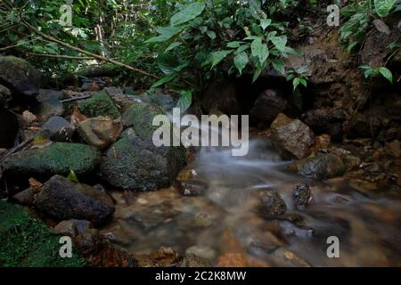 A small creek in the middle of Sumatra's tropical rainforest during rainy season. North Sumatra, Indonesia.