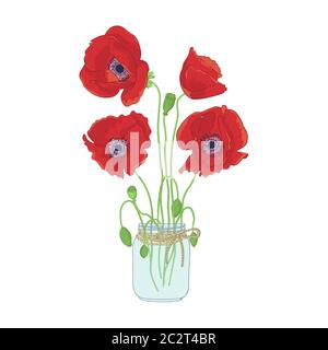 Hand drawn poppy flowers in mason jar clipart. Floral design element. Isolated on white background. Vector - Stock Photo