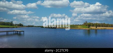 Panorama picture from a nice lake and vine yard from Western Australia - Stock Photo