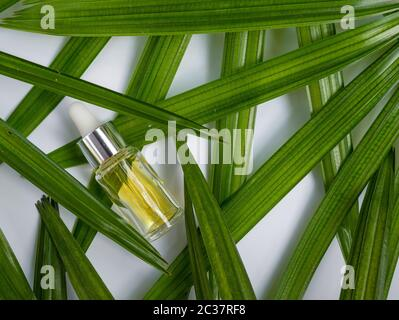 yellow cosmetic color oil chemicals for beauty care