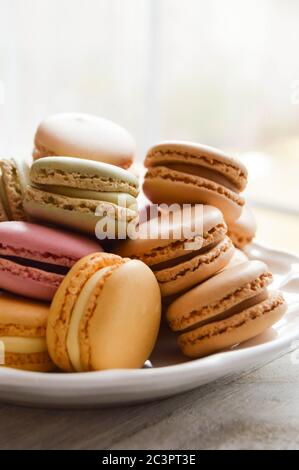 pastel macarons on a white plate