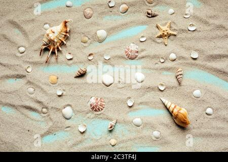 Different types of seashells are spread on sand on a turquoise background. Top view. - Stock Photo