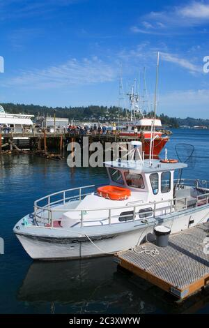 Fishing boats in the bay front area of Newport - Stock Photo