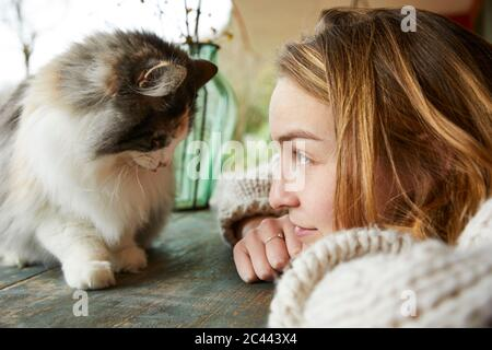 Young woman looking at Norwegian forest cat on wooden table outdoors - Stock Photo