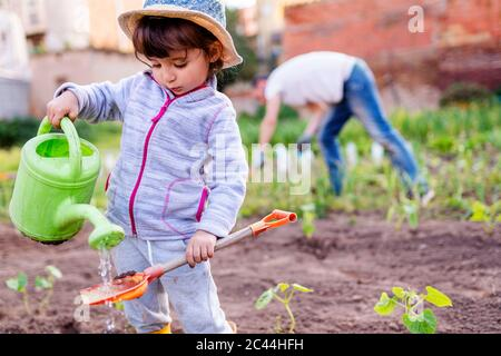 Cute girl pouring on shovel water from can while standing against father at orchard Stock Photo