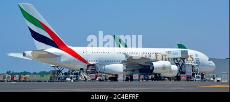 Emirates logo on Airbus A380 double deck wide body four engine jet airplane airport apron stand ground crew in attendance Rome Fiumicino Airport Italy - Stock Photo