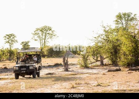 A jeep with passengers observing a pair of lions resting in a game reserve Stock Photo