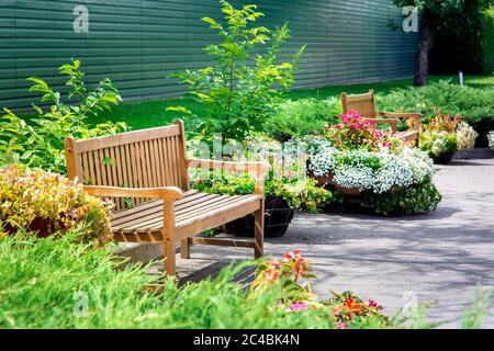 wooden bench in a park with flowers in flowerpots on asphalt near a green lawn on a sunny summer day in the garden. - Stock Photo