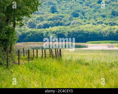 Swampy lake near fence Ponikve island Krk Croatia Europe - Stock Photo