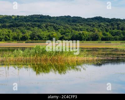 Swampy lake mirror image mirroring Ponikve island Krk Croatia Europe - Stock Photo