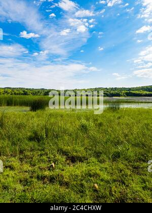 Lake Ponikve island Krk Croatia Europe - Stock Photo