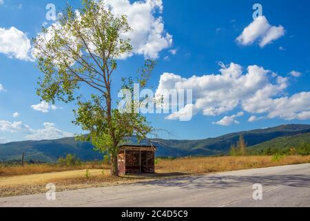 Old rusty bus station under lonely tree - Stock Photo