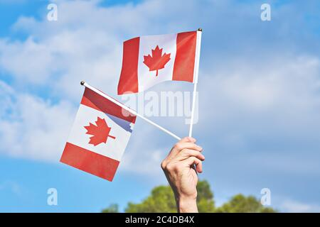 Raised hand with two waving Canadian flag against blue sky. Happy Canada day. 1st July celebrate national holiday of Canada called as Canada's birthday - Stock Photo