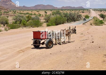 Red carriage drawn by three donkeys standing on the road in Namibia, Africa - Stock Photo