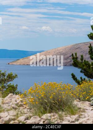 Coastline near Stara Baska island Krk Croatia Europe - Stock Photo