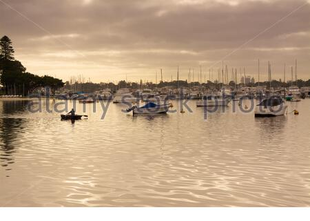 A man rowing a boat in atmospheric golden light near the Freshwater Bay Yacht Club on the Swan River in Perth, Western Australia. - Stock Photo