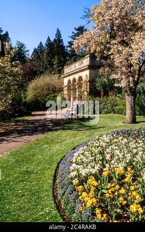 Blossom, lawns and flower beds in Spring the Botanical Gardens, Royal Victoria Park, Bath, UK - Stock Photo