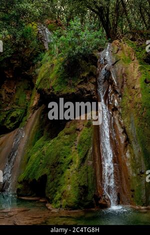 Vertical shot of a small waterfall from a rock covered with moss