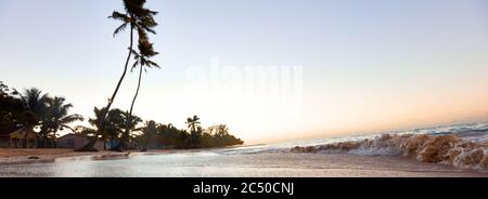 Paradise beach. Tropical paradise, white sand, beach, palm trees and clear water. - Stock Photo