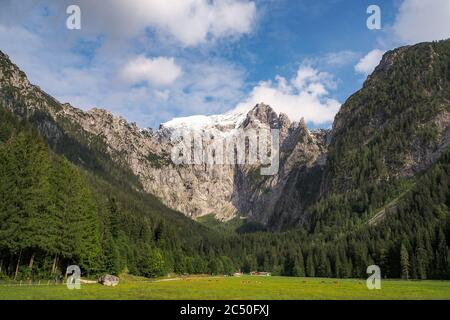 Snowcapped mountain Hoher Goell with its west face and Pflughoerndl to the right from Scharitzkehl Alm at Berchtesgaden national park, Bavaria, German - Stock Photo