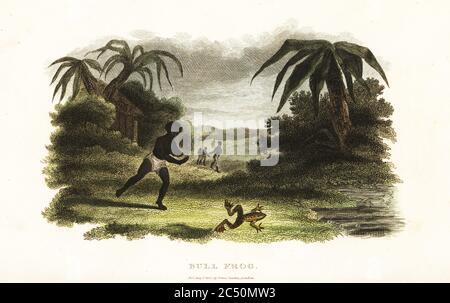anus und andy