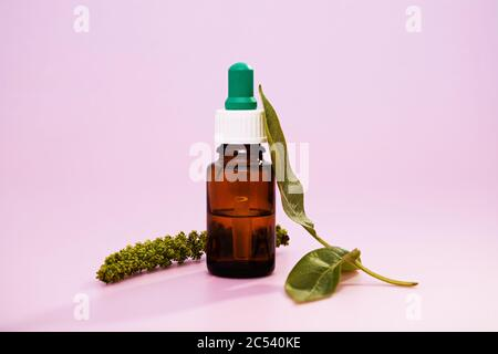 A closeup of medicinal leaf extracts in a medicine bottle over a pink background - Stock Photo