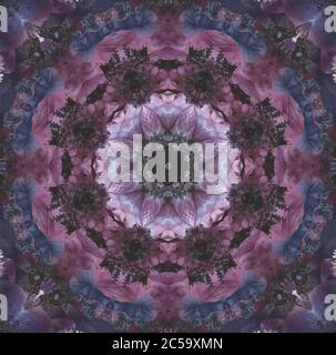 Fine art still life floral color ornamental mandala made of macros of pink and violet blue anemone blossoms with detailed texture in vintage painting - Stock Photo
