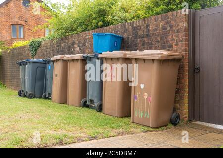 Row of brown and black recycling wheelie bins neatly lined up in front of a brick wall ready to be emptied by refuse collectors. Hertfordshire. UK - Stock Photo