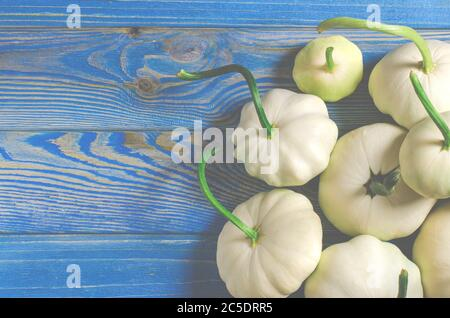 Harvest of organic garden vegetables. Young patisons lie on a wooded table