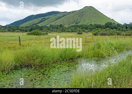Meadow with rivulet in front of hills along the Linden-Lethem dirt road linking Lethem and Georgetown through the savanna, Guyana, South America - Stock Photo