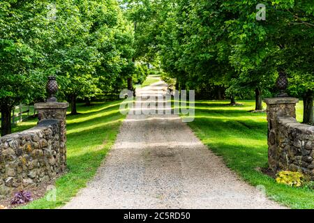 Gated open entrance with road driveway in rural countryside in Virginia estate with stone fence and gravel dirt path street with green lush trees in s - Stock Photo