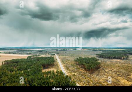 Aerial View Of Road Through Deforestation Area Landscape. Green Pine Forest In Deforestation Zone. Top View Of Field And Forest Landscape. Drone View