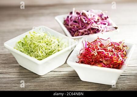 beetroot, radish and alfalfa sprouts in china bowls on wooden table - Stock Photo
