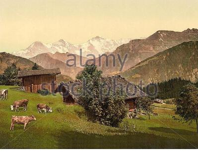 View of Jungfrau, Monch and Eiger from Beatenberg,  Interlaken, Bern, Switzerland  1890 - Stock Photo